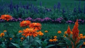 Flower_garden_68
